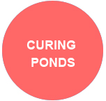 curing ponds