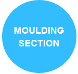 moulding section